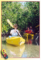 Eco-Tours and Kayaking in and around Key West, Florida