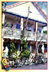Property Owner Listings in Key West, Florida ... photo by Rob O'Neal